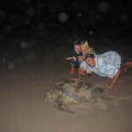 Olive Ridley Mama